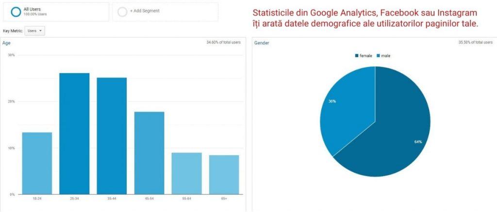 statistici demografice google analytics